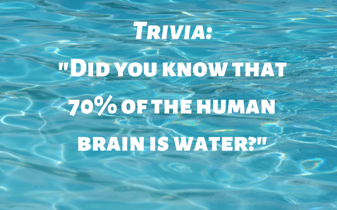 the human brain is water?